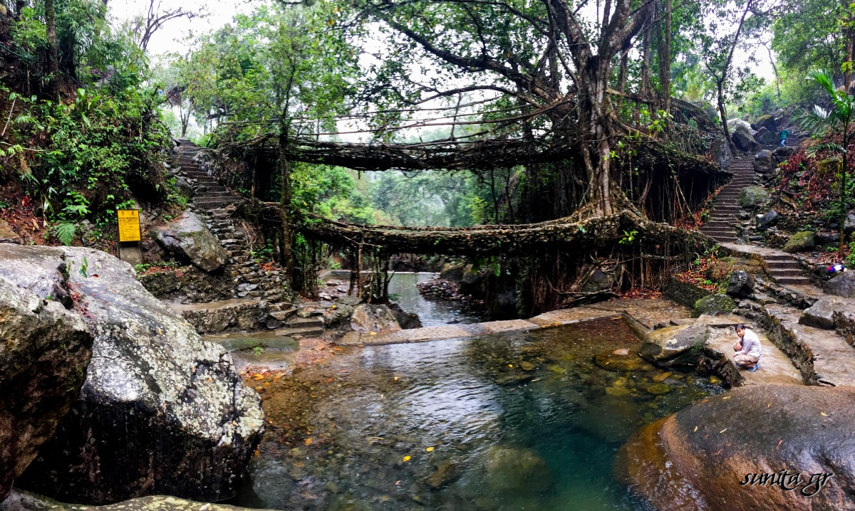 #asia, #bridges, #forest, #hike, #homestay, #india, #jungle, #manmade, #must do, #nature, #nongriat, #photography, #root bridges, #serene, #steps, #travel, #trek, #village, #waterfall, #Meghalaya