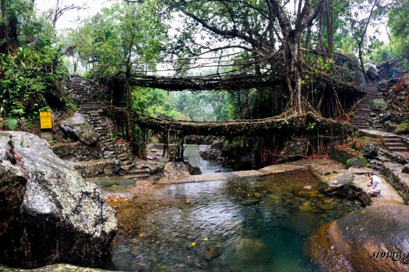 #asia, #bridges, #forest, #hike, #homestay, #india, #jungle, #manmade, #must do, #nature, #nongriat, #photography, #root bridges, #serene, #steps, #travel, #trek, #village, #waterfall, #Meghalaya