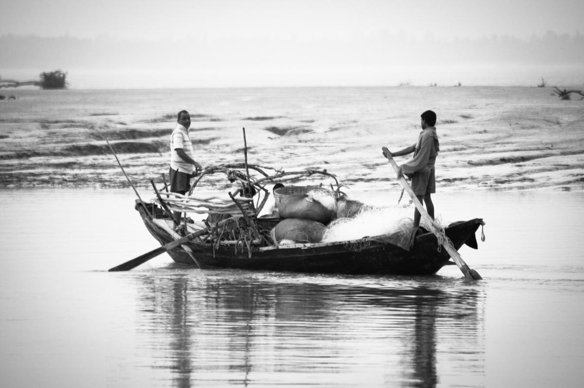 #birds #birdsphotography, #sunderbans #india #travel #nature #wildlife #forests #mangroves